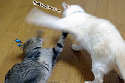 2011-09-30-6.jpg