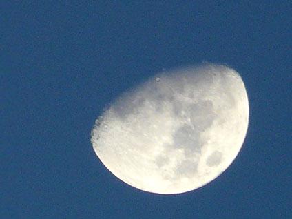 20110713_2.jpg
