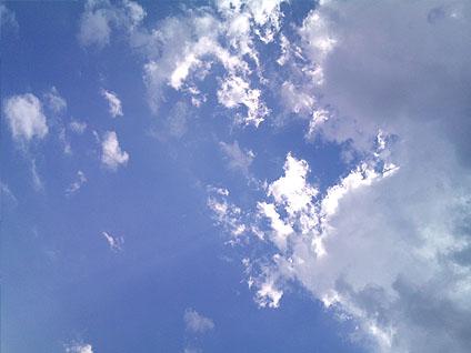 20110814_1.jpg