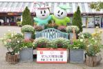 花フェスタ記念公園 西入り口