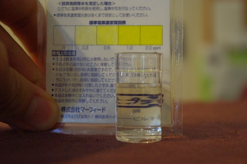 IMGP6989.jpg