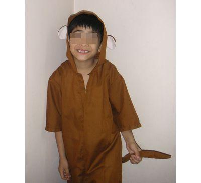 costume-monkey.jpg