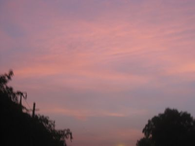dawn030710.jpg