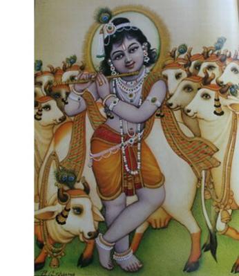 lord-krishna10d.jpg