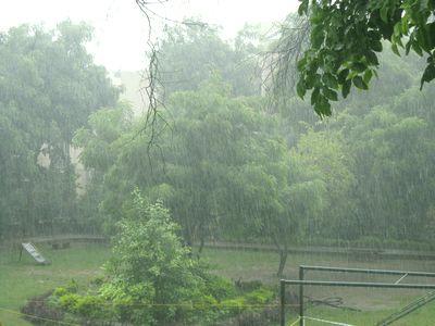 monsoonrain2.jpg