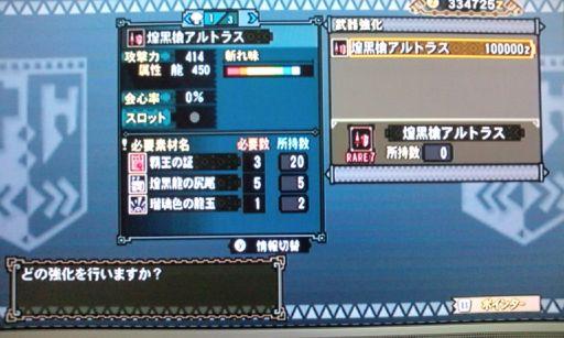 F1003377.jpg