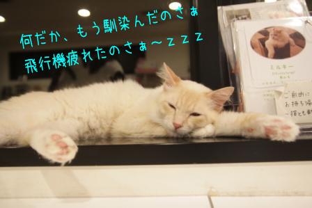 ガム男20110520-3