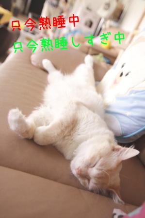 ガム男20110603-2