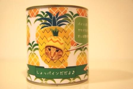 ちゃんぷ20110625-2