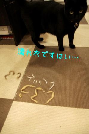 しろう店長20110811