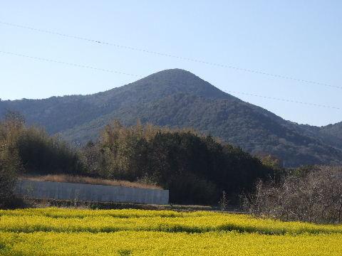 2010_0221お雛様0105
