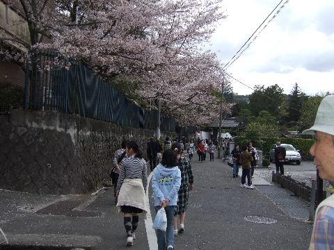 2010_0412京都Cの旅0049
