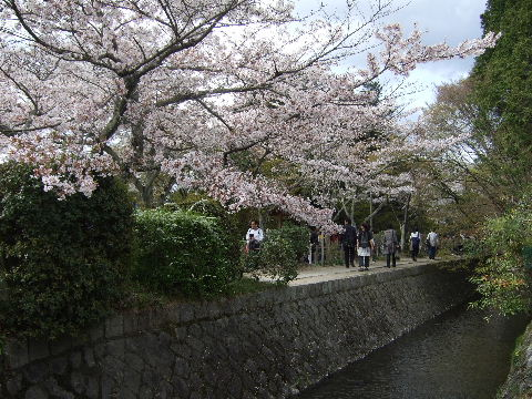 2010_0412京都Cの旅0040