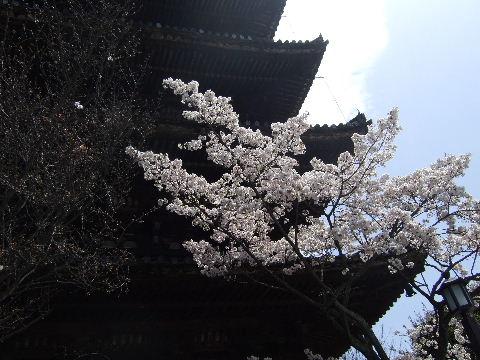 2010_0412京都Cの旅0006