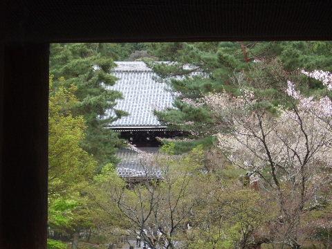 2010_0412京都Cの旅0051