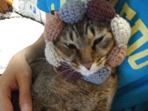 2011_0929来る福招き猫まつりin0009