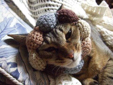 2011_0929来る福招き猫まつりin0020