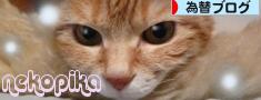 newbanner.jpg