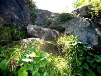 一段目と二段目の間の、段々岩