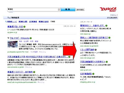 net車海老NO1検索ブログ