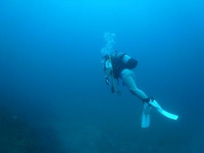 泳ぐダイバーさん☆