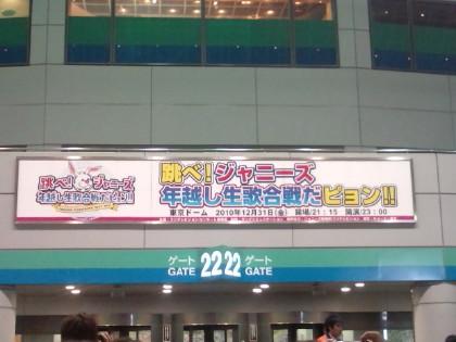 20101231220946_1.jpg