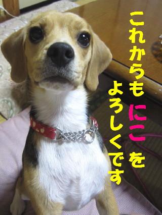 IMG_2275_2.jpg