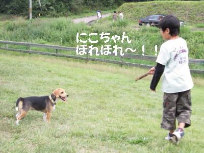 IMG_2577_1.jpg