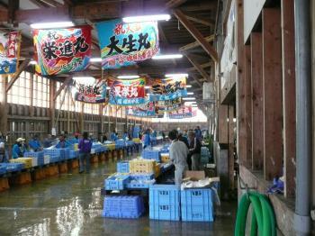 鮮魚販売会場