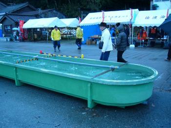 レース水槽