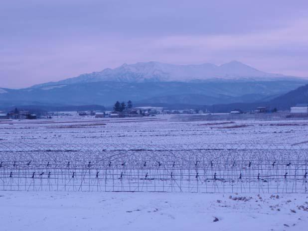 画像趣味旭川冬景色 ブログ2