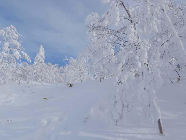 画像趣味スノーボード ブログ1