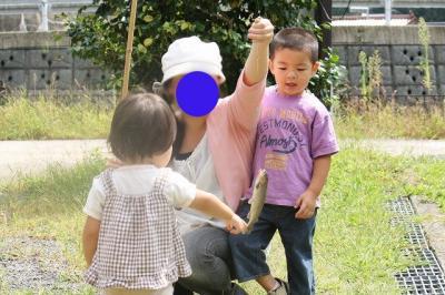 2009.09.13 栗拾い 158