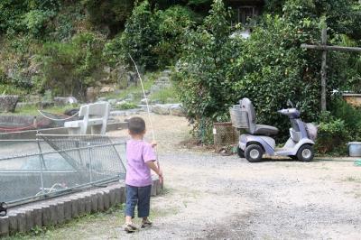 2009.09.13 栗拾い 175
