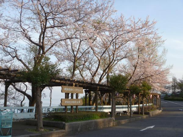 奥琵琶湖パークウェイ