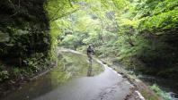 mt_ikeda-02.jpg