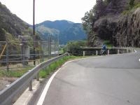sakauchi-6.jpg