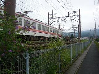 P1030003.jpg