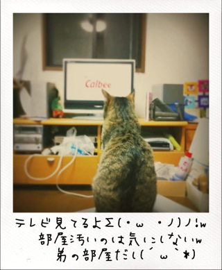 38CFAD96.jpg