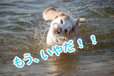 2010・07・24鳴尾浜i