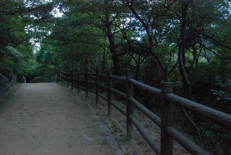 2010・09・12甲山森林公園2