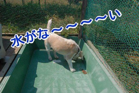 2010・09・19ラン2