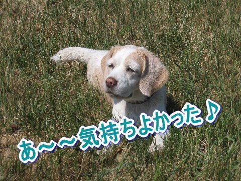 2010・09・19ラン10