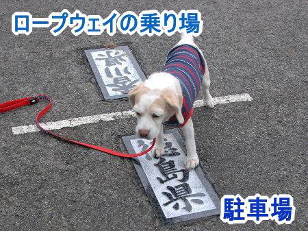 2010・09・25雲辺寺3