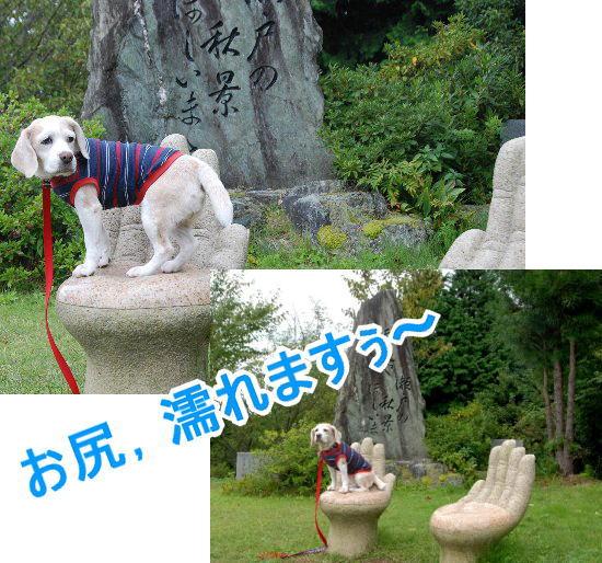 2010・09・25雲辺寺2