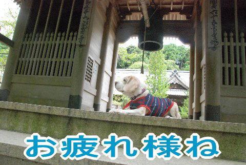 2010・09・25三角寺1