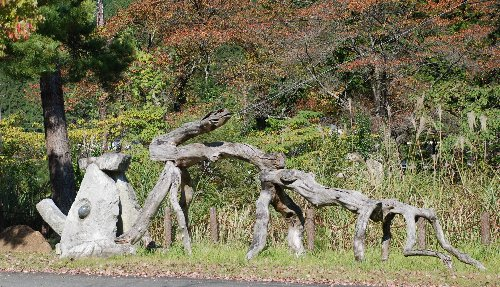2010・11・05朝来の森3