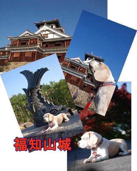 2010・11・05福知山城
