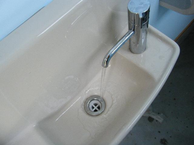 手洗いもバッチリです。