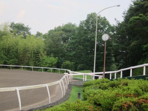 (3)無人角馬場